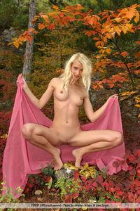 Adella - Autumn Forest