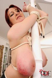Mistress Bites Vanessa's Nips