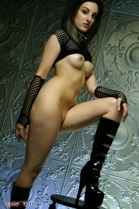 Zana the crazy kitten in fishnet