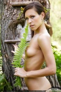 Exotic erotic