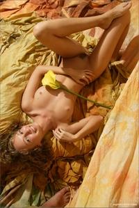The Nude Revolution