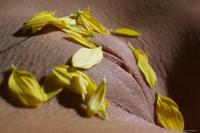 Sweet Vanessa's juicy pussylips