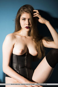 Ana Fox Leather Corset