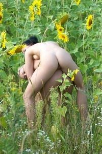Lost in a huge sunflower field